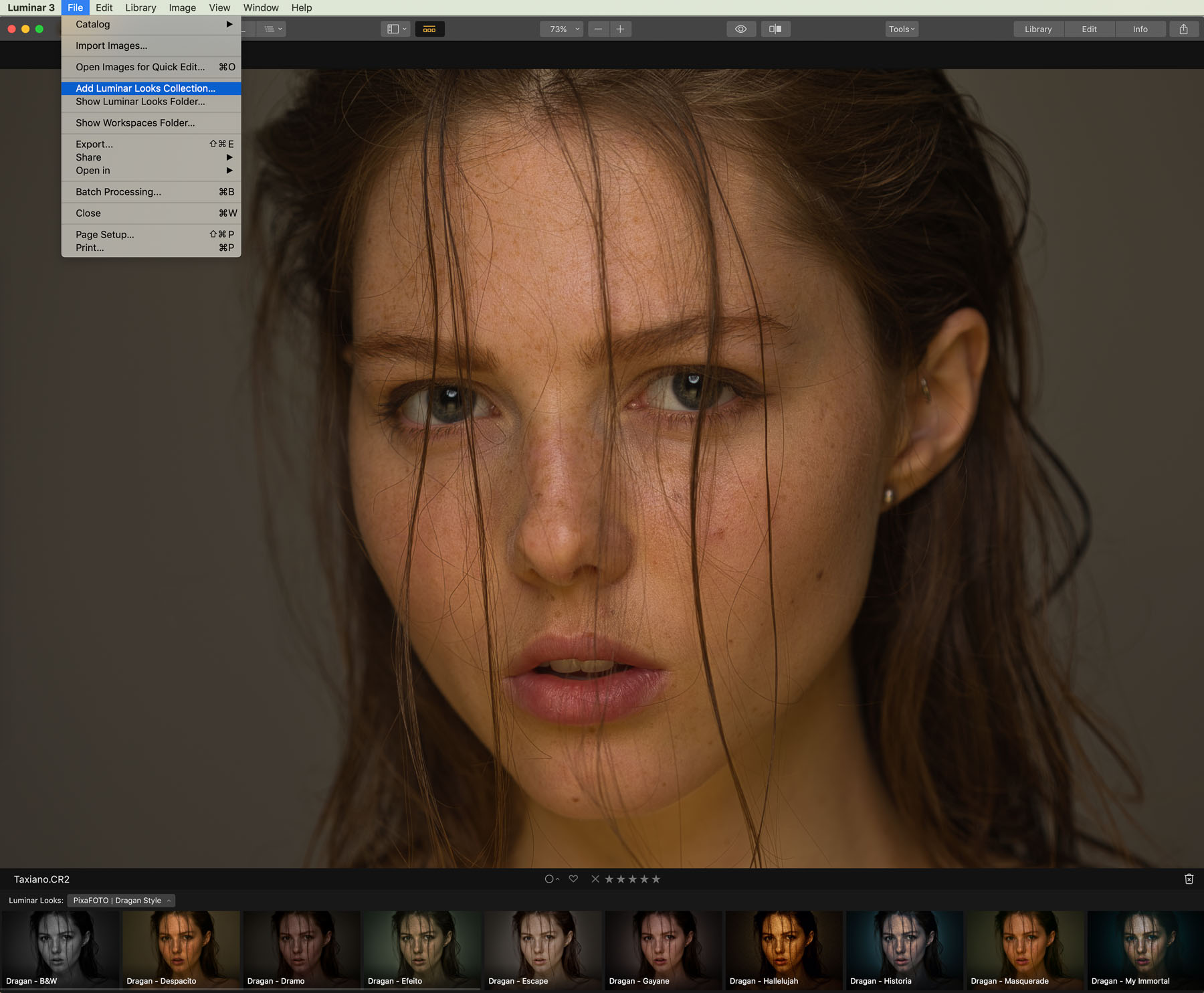 How To Install Luminar 3 Looks