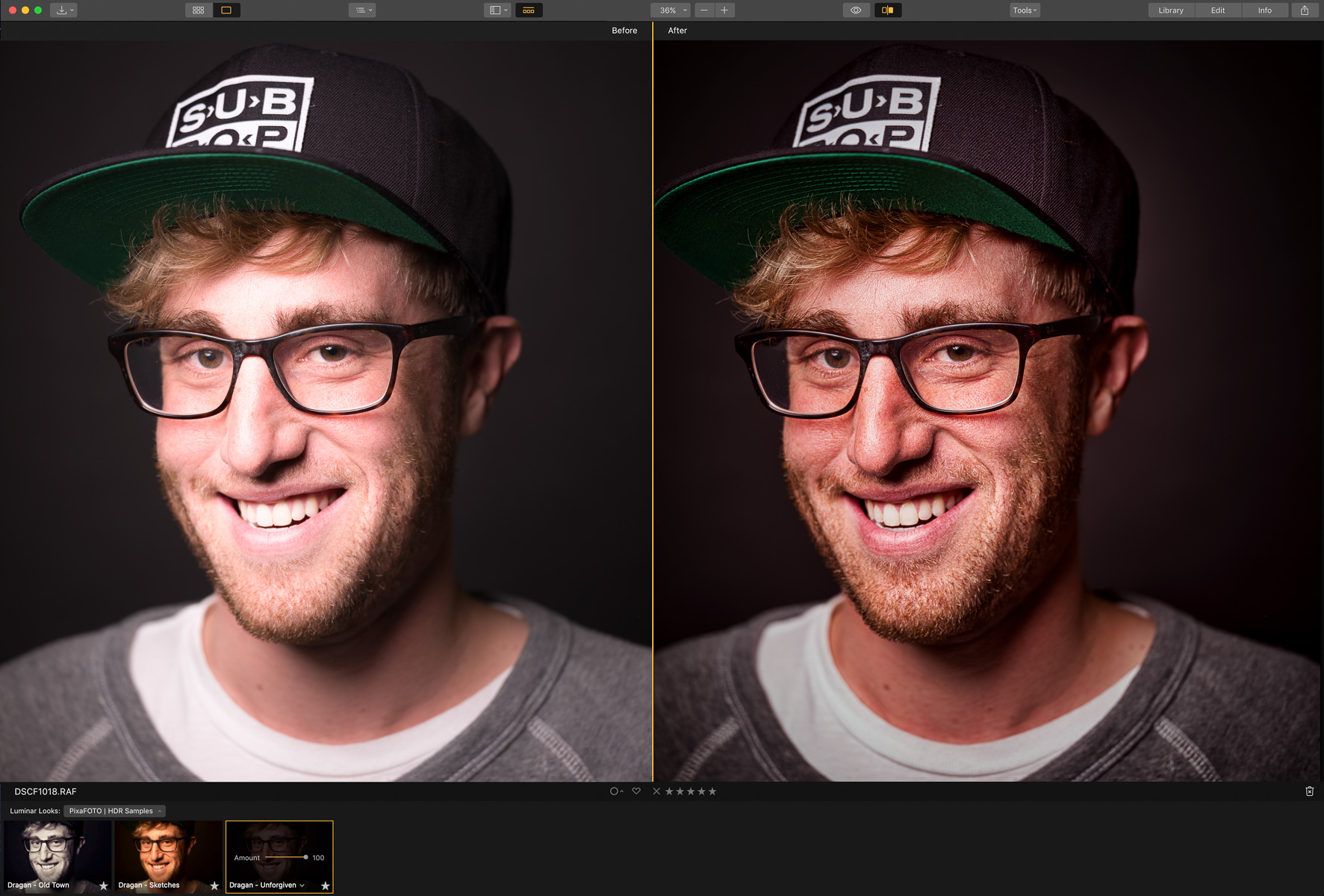 Luminar Looks - Dragan Style Presets - FREE Samples - Before-After