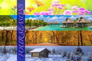 DxO FOUR Seasons Presets from PixaFOTO.com