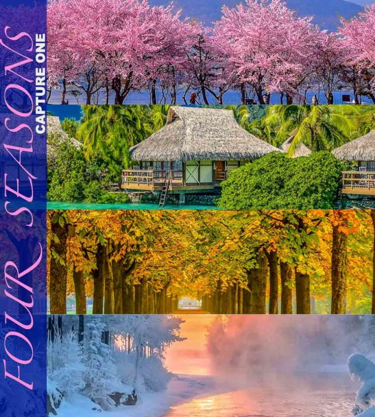 CAPTURE ONE STYLES - Four Seasons Collection