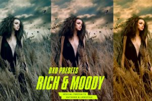 DxO Rich & Moody Photo Lab Presets from PixaFOTO.com