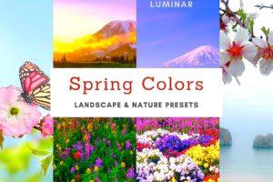 Luminar NEO | AI Spring Colors Templates from PixaFOTO.com
